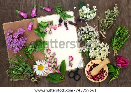 Herbal medicine preparation herbs flowers used stock photo edit now herbal medicine preparation with herbs and flowers used in natural alternative remedies with hemp paper notebook mightylinksfo