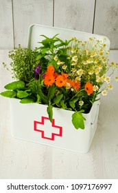 Herbal Medicine. Rosemary, mint, chamomile, thyme, melissa, lavender and calendula in a first aid box.