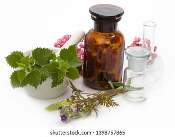 Herbal medicines - aromatherapy. Bach therapy. Herbal medicine, homeopathic remedies.