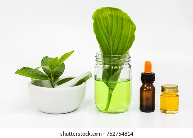 Herbal natural organic skin care serum with plant in white mortar bowl.