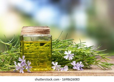 Herbal oil for experimentation and research in the glass bottle