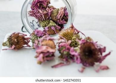 Herbal Tea Dried Echinacea Purpurea in Jar.