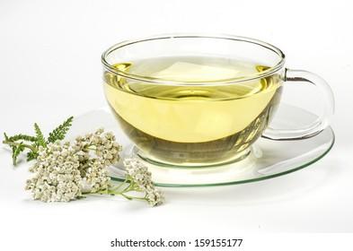 Herbal tea and fresh yarrow on white