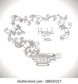 Herbal tea hand drawn illustration