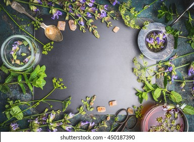 Herbal tea ingredients with various fresh herbs and flowers, cup of tea and tools on  black chalkboard background, top view, frame