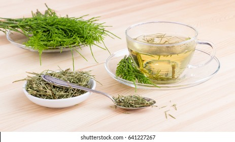 Herbal tea made from horsetail / herb tea / medicinal herb