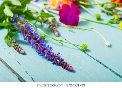 Kräuterpflanzen und Wildblumen auf blauem Holztisch