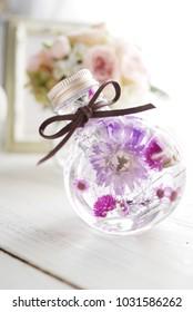 Herbarium, Dry Flower, Purizard Flower, Flower, Flower