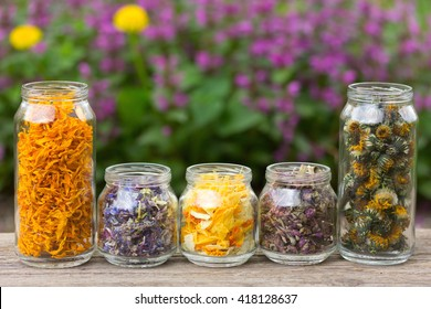 herbs and flower petals in glass jars on the background of blossoming spring plants. with space for text. the concept of aromatherapy, homeopathy, alternative medicine