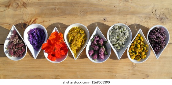 Herbs and flowers used in  natural alternative remedies in ceramic bowls on a wooden background. Top view. Flat lay.