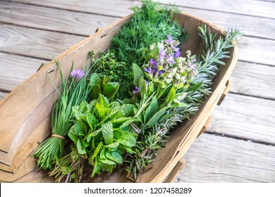 Herbs fresh from kitchen garden in harvest basket: chives, mint, thyme, rosemary, dill, sage with edible purple flowers - shallow depth of field