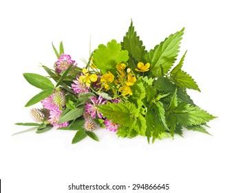 Herbs nettle, celandine, red clover over background close-up.