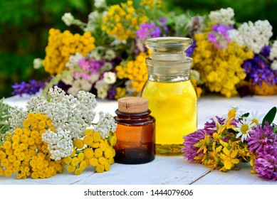Сolorful herbs on a white background with bottles of oil and tinctures