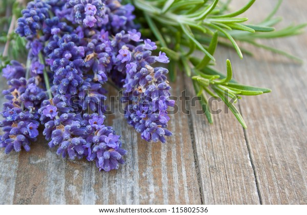 herbs on wooden background/lavender/rosemary