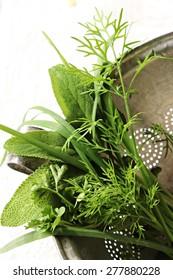 Herbs in a sieve