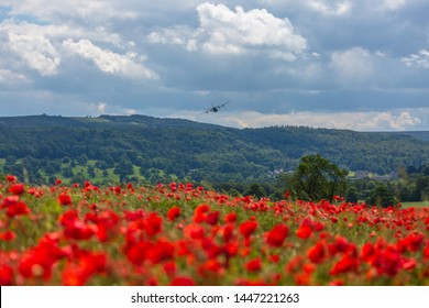 Hercules plane flying over a poppy field - lest we forget