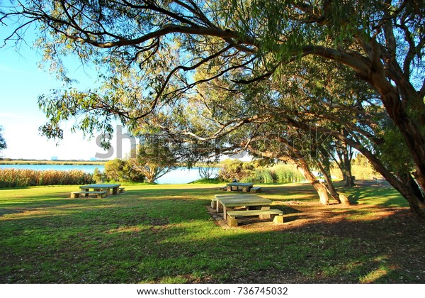 Herdsman Lake Park Perth Australia Stock Photo (Edit Now) 736745032