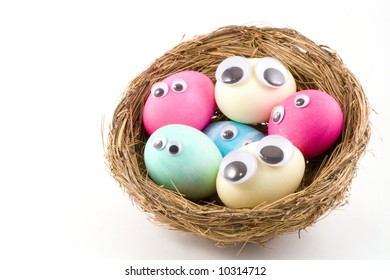Here is a nice bird nest with six googly eyed eggs cuddled up in it.