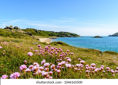 herm coast in spring