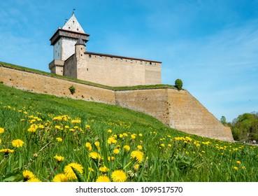 Hermann Castle in medieval fortress. Narva, Estonia, Baltic States, Europe
