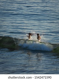 Hermosa Beach, California / United States of America - October 26 2019: A young couple get hit by a large wave while swimming in the Pacific Ocean at Hermosa Beach.