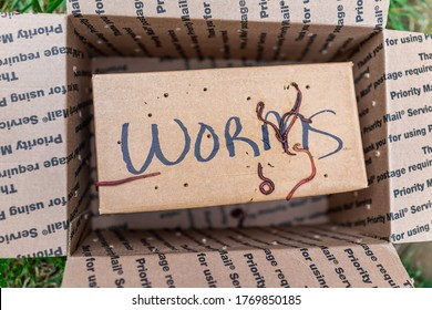 Herndon, USA - April 29, 2020: Worms sign on package delivery box as priority mail from USPS for garden container compost tower and nobody