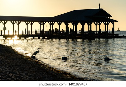 Heron and Pier Silhouette - Sunset Key in the Florida Keys