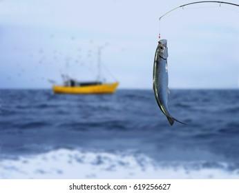 herring fish on fishing hook on sea background