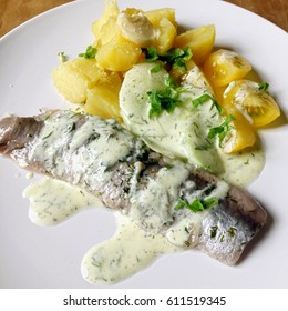 Herring with potatoes and cucumber salad in yoghurt with herbs