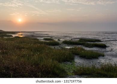 Het Oerd, Ameland wadden island Holland