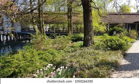 Heviz. Hungary. Europe. Thermal lake Heviz. Spring. Park.