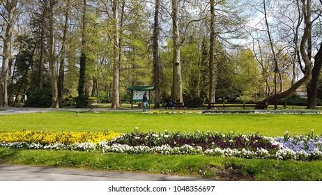 Heviz. Hungary. Thermal lake Heviz. Park. Spring.