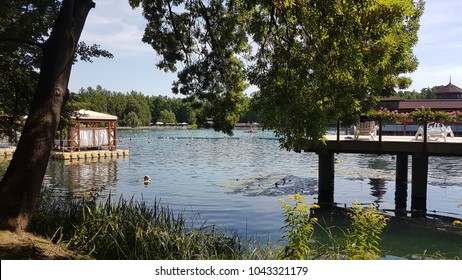 Heviz. Hungary. Thermal lake Heviz. Summer.
