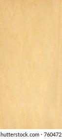 hi res image of birch wood
