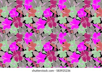 Hibiscus flowers on a black background in purple and pink colors.