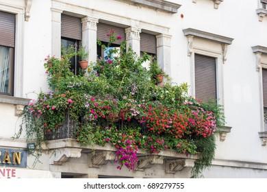 Hidden angles of San Daniele. Ham Town