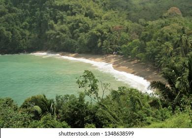 Hidden beach flanked by tropical rain forest, Scarborough, Ward of Tobago, Trinidad and Tobago