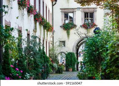 Hidden garden. Regensburg, Bavaria, Germany.