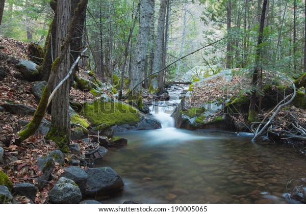 Hidden gem in the mountains with a green forest and serene small waterfall with soft flowing water and mossy rocks
