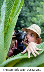 Hidden traveler man photographing in jungle. Portrait of curious tourist in tropical nature. Photographer with the camera peeking through the green leaves.