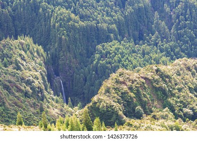 Hidden Waterfall in the Azores, Portugal
