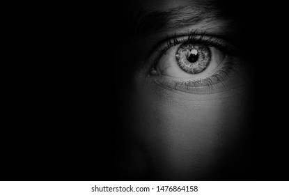 hidden  woman's face background  beautiful eye detail