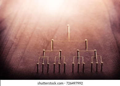 Hierarchy, command chain, company / organization structure or layer and grouping concept image.?Top down structure made from gold wires and nails on rustic wooden surface. Shallow depth of field.