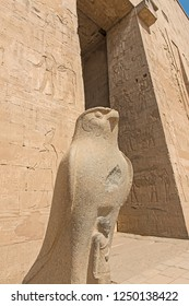 Hieroglypic carvings on wall at the ancient egyptian temple of Horus in Edfu with statue of god