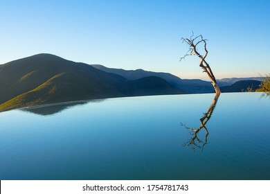 Hierve el Agua: peace and calm by one of the most beautiful natural infinity pools in the world with water mirror effect and a solitary tree in focus.