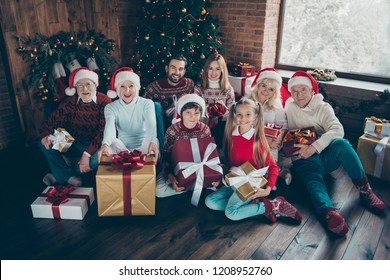 High above angle view portrait of noel large family gathering. Grey-haired grandparents, granddaughter, grandson, brothers, sisters, grandchildren sitting on floor, getting gifts, fir tree, fun joy
