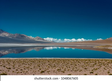 High Andean lagoon in the triple border area between Argentina, Chile and Bolivia
