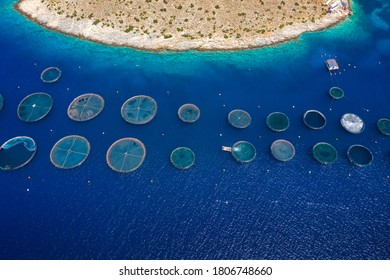 High angle aerial view of a a fish farm off the coast in the blue, mediterranean sea in Greece
