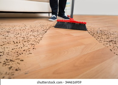 High angle view of broom cleaning dirt on hardwood floor at home