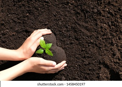 Save Environment Images, Stock Photos & Vectors   Shutterstock